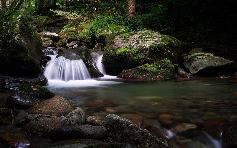 лето река перекат Веер.photo preview