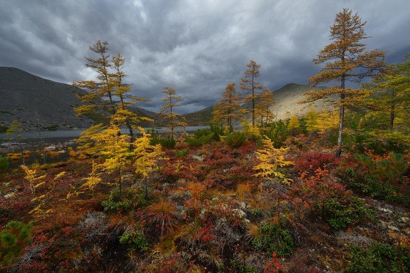 Осень...Просто осень...photo preview