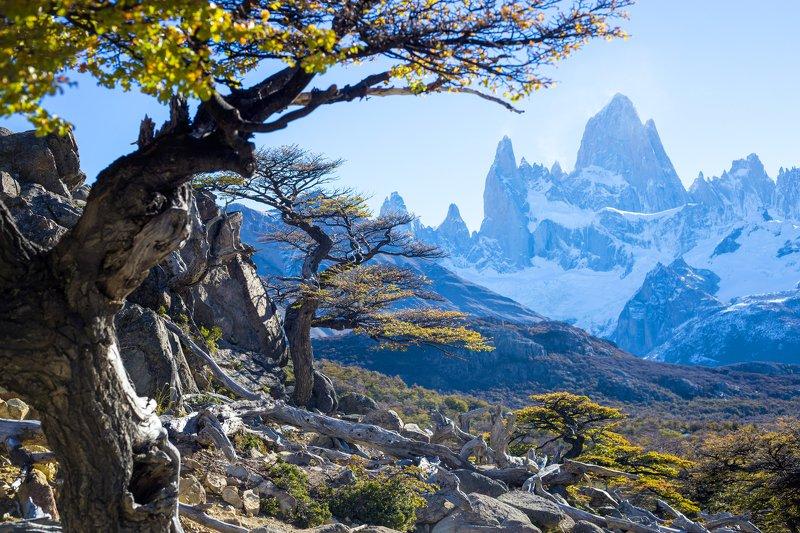 Аргентина, Патагония, Фицрой Гора Фицрой. Аргентинаphoto preview
