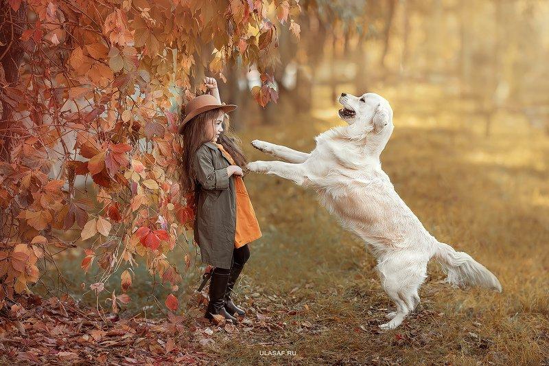 art photo, glamour, портрет, прогулка, осень, autumn, ребенок, девочка, girl, животное, собака, dog, радость, малыш, друзья, happy, любовь, love, nikon, 105mm, kid, children, beautiful, ретривер, golden retriver, labrador, people, eyes, face ***photo preview