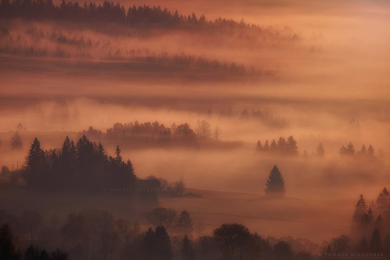 mountains, poland, polish, landscape, sunrise, sunset, colours, autumn, awesome, amazing, adventure, travel, beautiful, morning, forest, fog, mist, trees The Special Onephoto preview