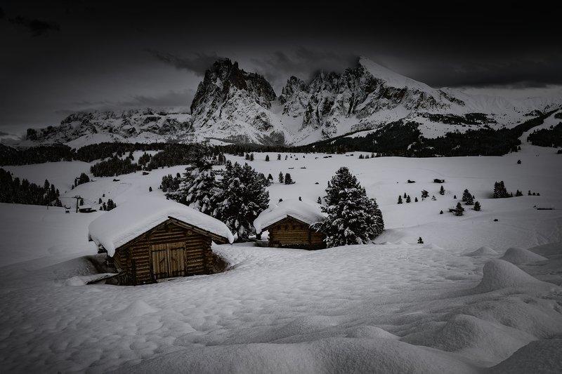 Alpe de Siusi....photo preview