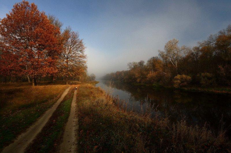 осень, утро, дорога, река, туман По осенним дорожкам.photo preview