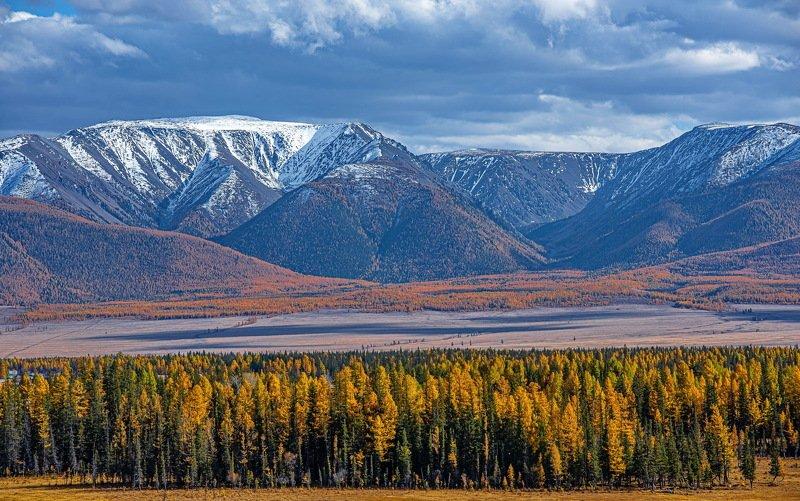 алтай. осень. горы. Курай.photo preview