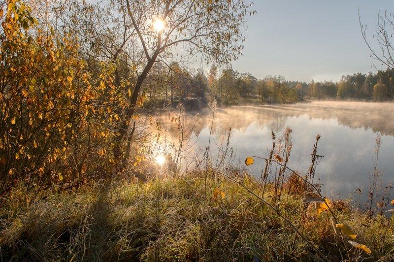 пейзаж,природа,россия,осень,золотая осень \