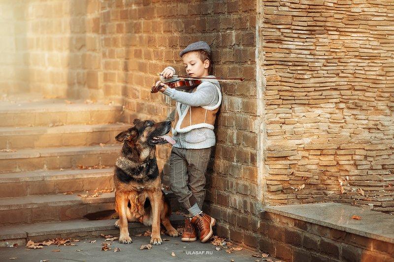 портрет, art, portrait, осень, sunset, закат, autumn, дети, мальчик, boy, people, eyes, face, собака, овчарка, dog, волшебство, magik, happy, nikon, 105mm, kid, children, beautiful, love, скрипка, violin ***photo preview