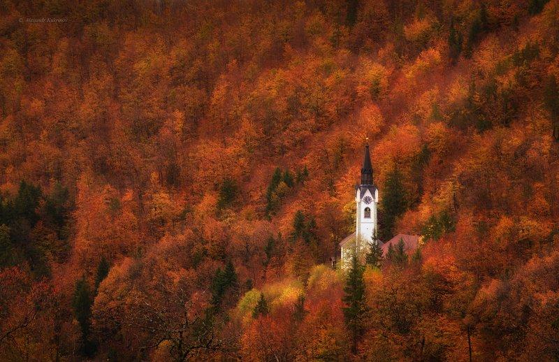словения, осень, пейзаж, Затеряться в осени....photo preview
