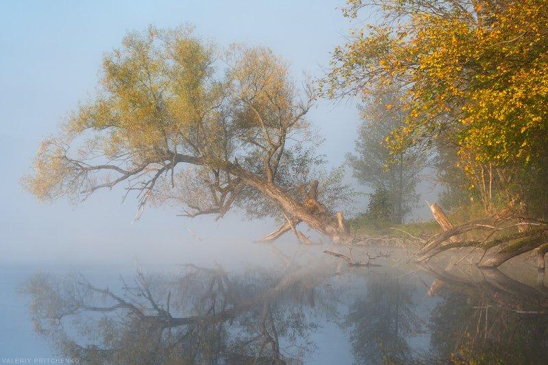 Осенним утромphoto preview