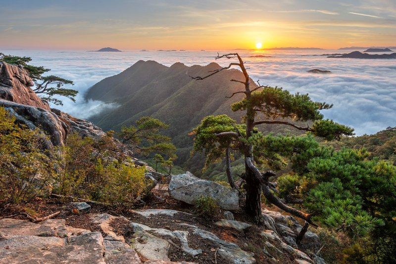mountains,peak,hiking,fog,clouds,pine,autumn Scarecrow Pinephoto preview
