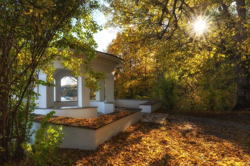 Парк, Тойла, Эстония. Осенний уголок.photo preview