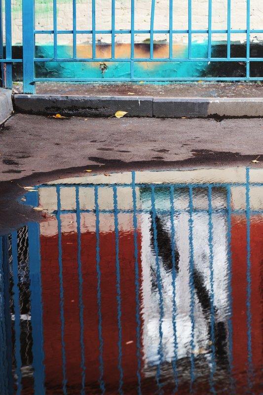 Городские зарисовки.photo preview