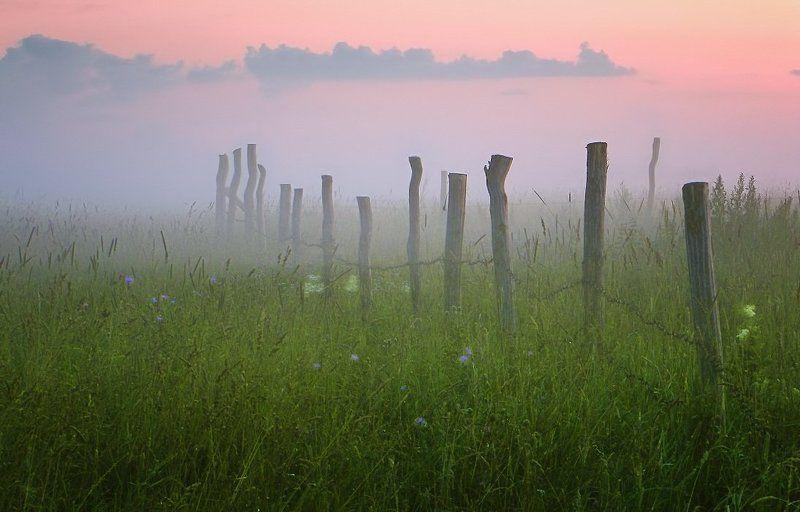 забор, поле, туман, вечер Цветной вечерphoto preview