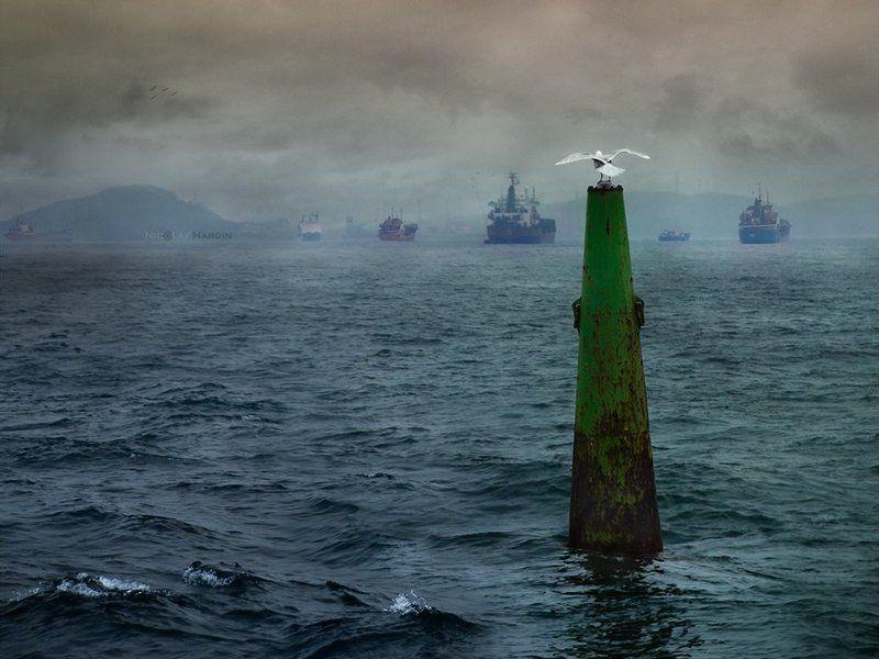 японское, , , море, , , корабли, , , буй, чайка Difficult choicephoto preview