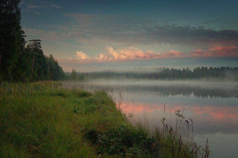 утро, озеро, туман Утро в розовых облакахphoto preview