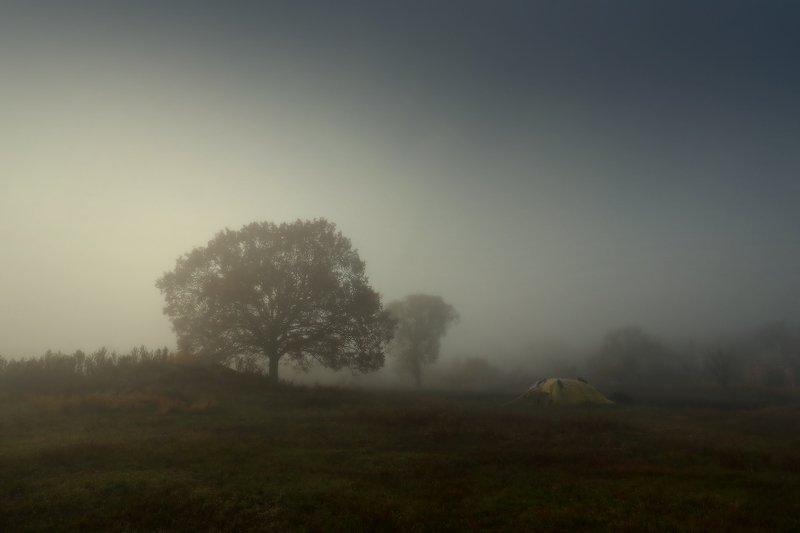 туман утро осень Про туманphoto preview