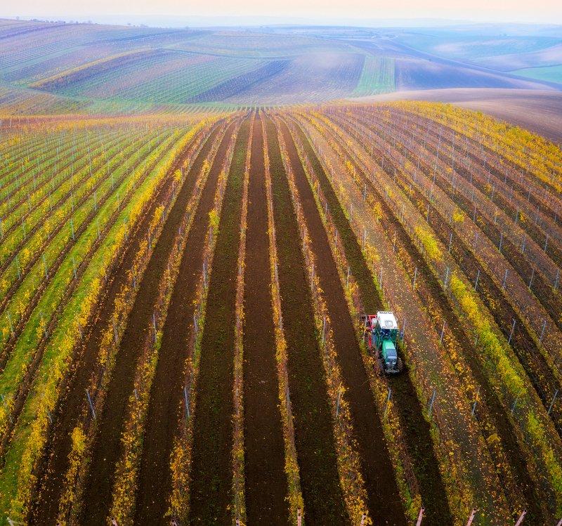 пейзаж, моравия, осень, Про линии, текстуры и эгрикалчер концепт...)photo preview