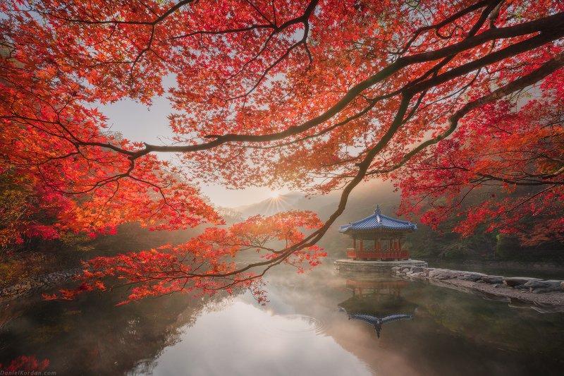 Осень в Корееphoto preview
