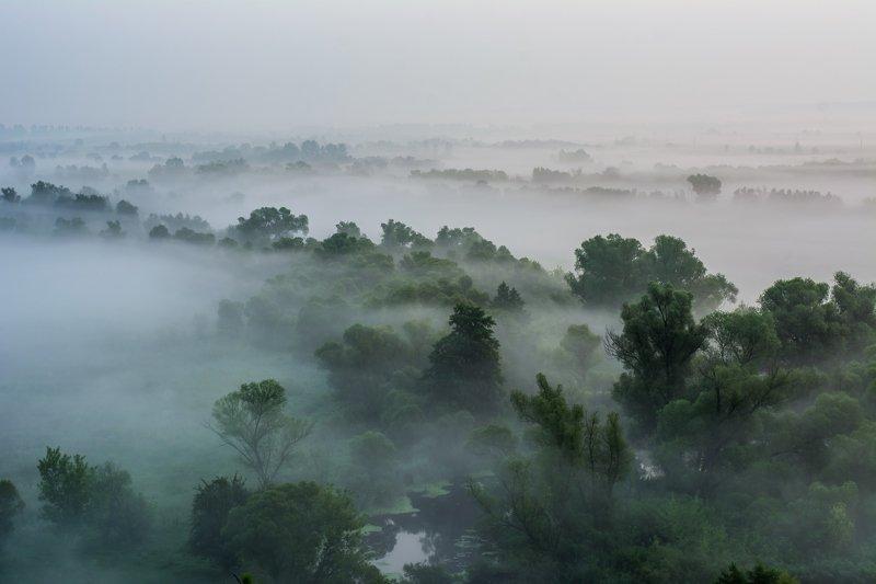 Ранним утром.photo preview