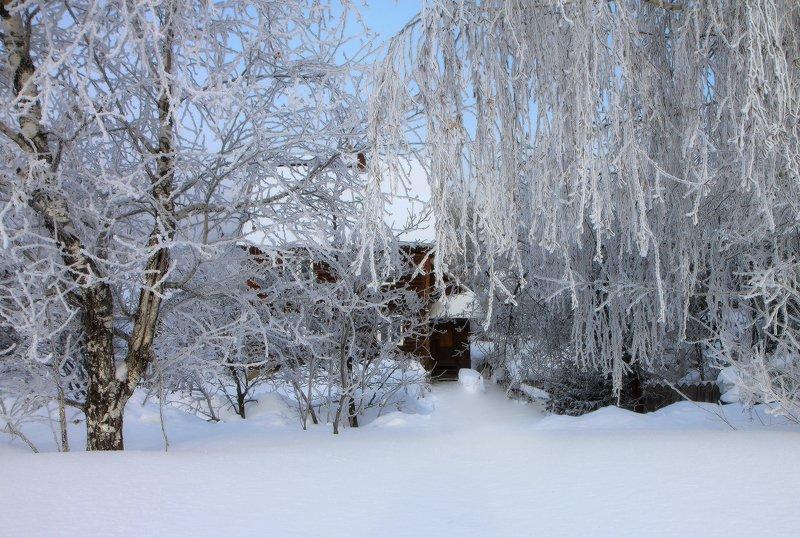 новокузнецк, сибирь, снег, зима Зимаphoto preview