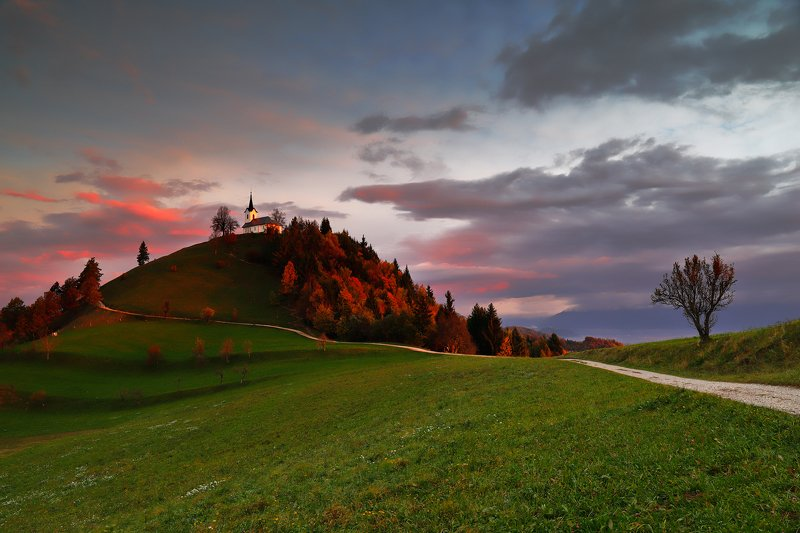 slovenia, morning, sunrise, light, autumn, color, church, hill, tree, road, sky, cloud, Pilgrim\'s eyephoto preview