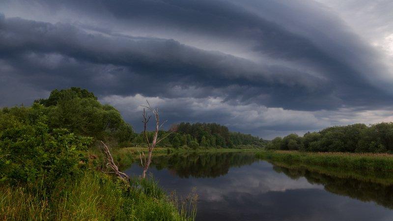 тучи, лето, река, отражение, травы, берег Надвигается...photo preview