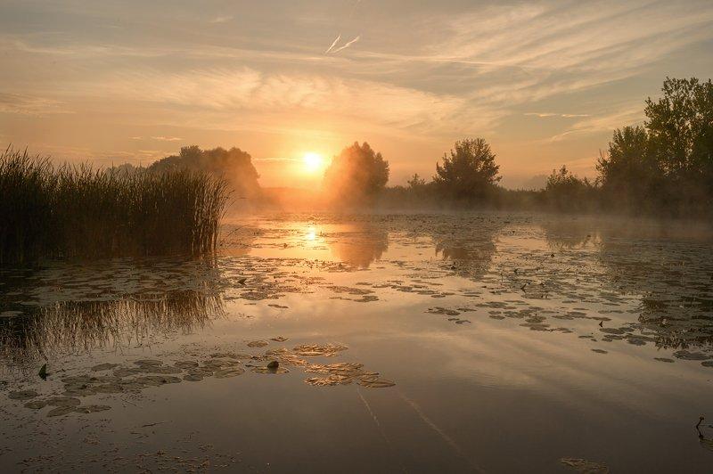 рассвет,лето,россия,туман,пейзаж \
