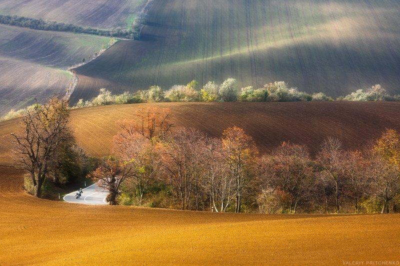 morava, moravia, landscape, nature, autumn, моравия, южная моравия, природа, пейзаж, осень Моравская осеньphoto preview
