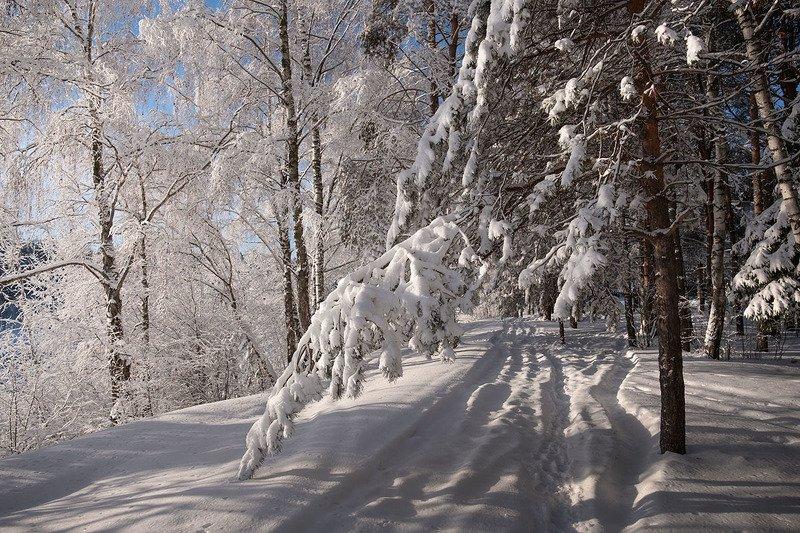 Зима пришлаphoto preview