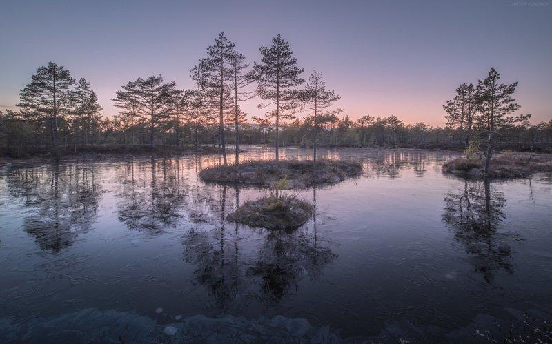 болото, закат, лёд, отражение Свежий лёдphoto preview