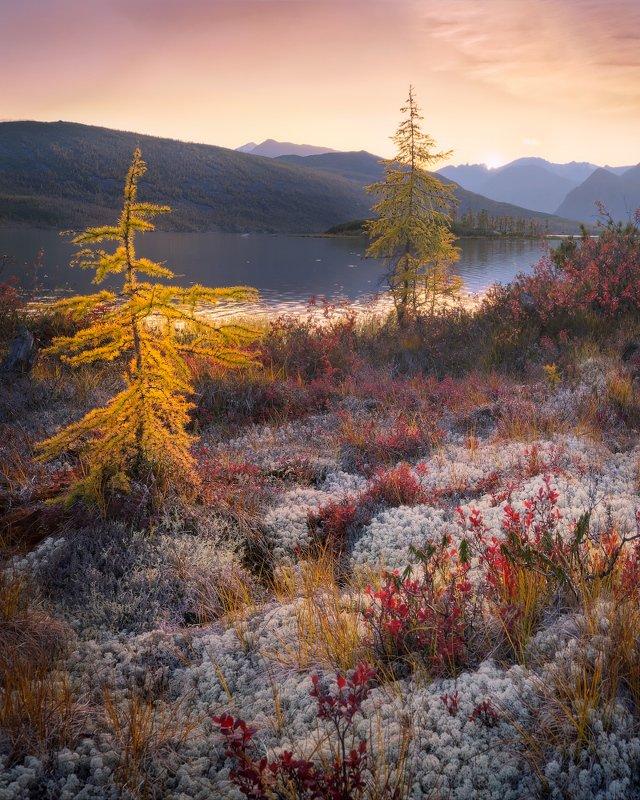 озеро, колыма, озероджекалондона, закат По колымской перине из мхаphoto preview