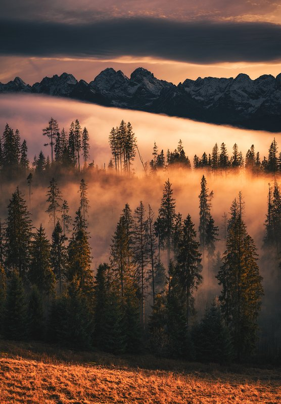 sunset, colorful, amazing, place, tatra, mountains, love, nature, globalshotz, forest, orange, clouds Colorful Sanset...photo preview