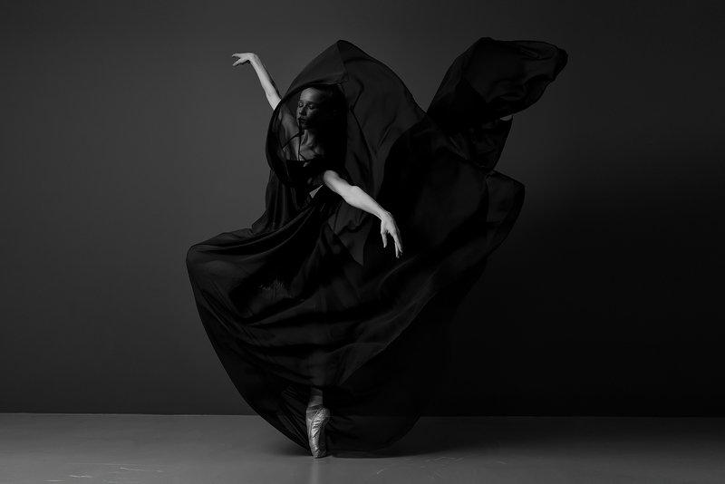 Черный лебедьphoto preview