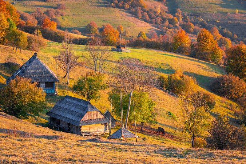 карпаты. осень Карпатыphoto preview