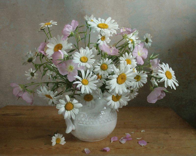 лето,  цветы, натюрморт, марина филатова, ромашки Ромашкиphoto preview