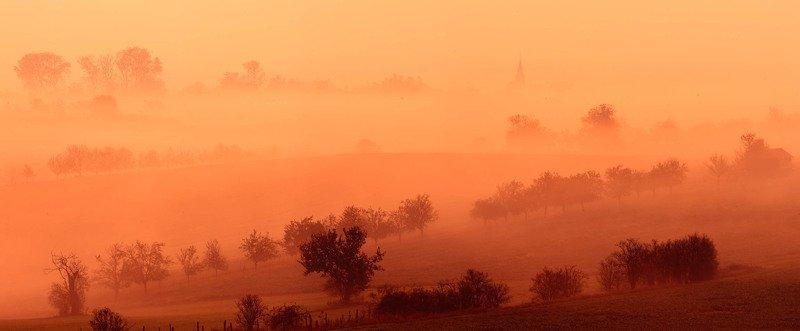 Golden fogphoto preview