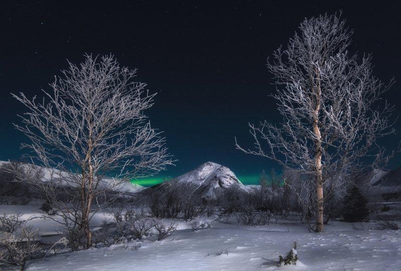 кольский, хибины Хибины. Серебро в лунном свете.photo preview