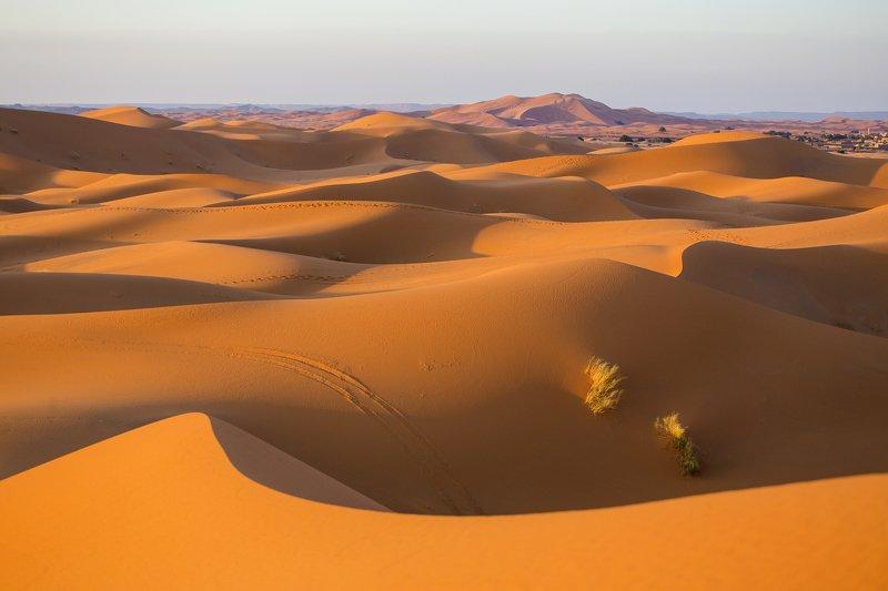 Пустыня Сахара. Мароккоphoto preview