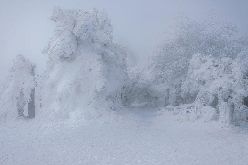 Зима на Машуке.photo preview