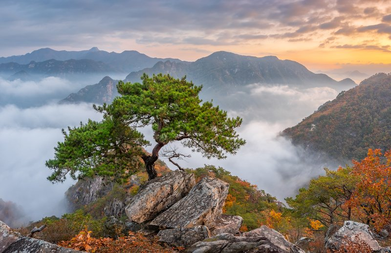 mountains,peak,hiking,fog,clouds,autumn Bright morning of the jebibongphoto preview