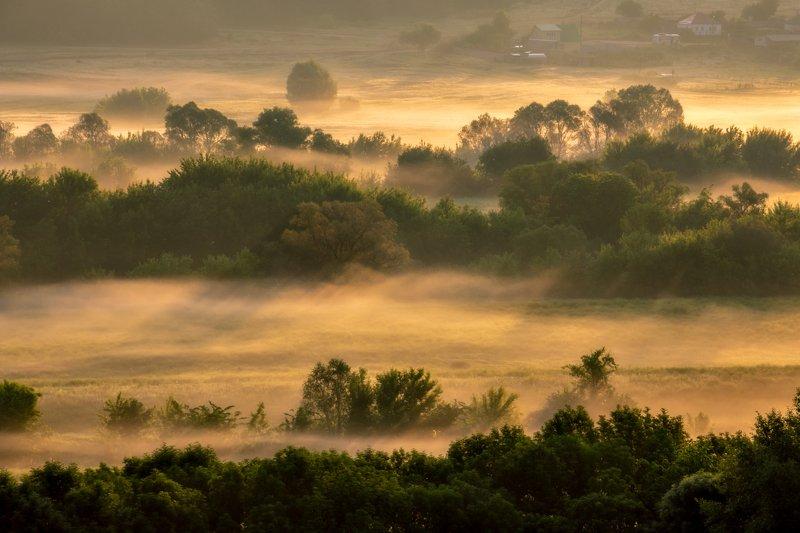 sunrise dawn morning sunlight landscape nature fog mist river outdoors Golden shorephoto preview