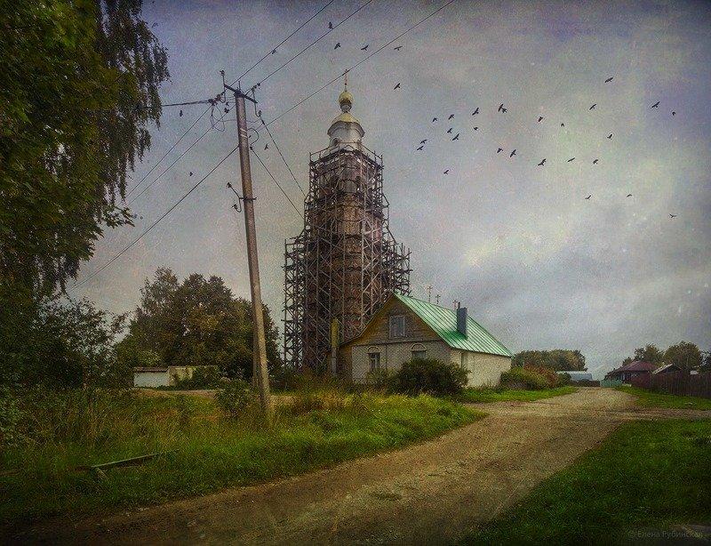 костромская, область photo preview