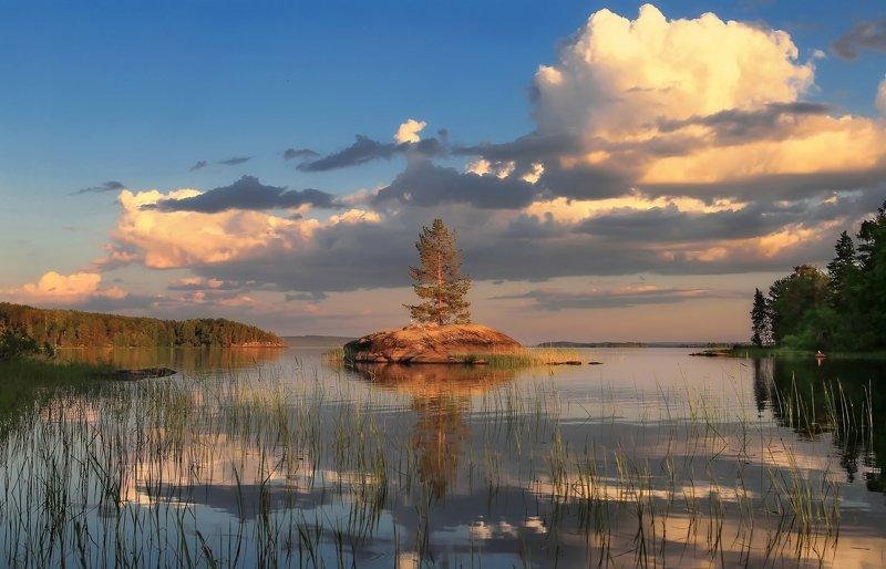 лето, карелия, пейзаж, природа И на камнях растут деревьяphoto preview