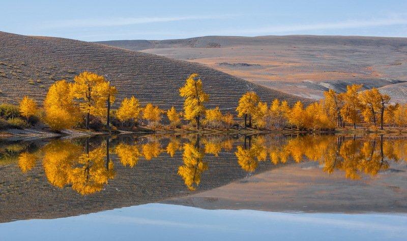 отражение. озеро.алтай. Отражениеphoto preview