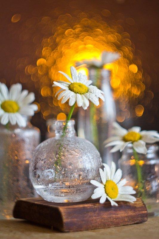ромашки, натюрморт, боке, цветы, брызги, вода, закат, солнце, бутылки, банки, стекло, красивый, лето, still life Ромашковое настроениеphoto preview