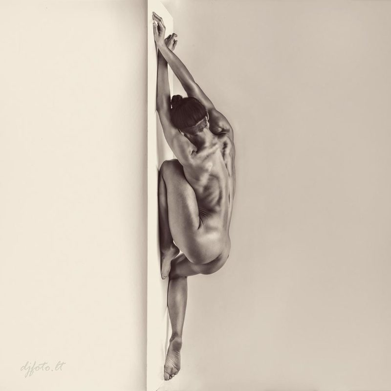 djfoto, nude, nude art, blackwhite, BW, nude Not Verticalphoto preview