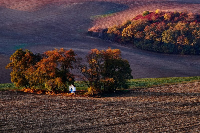 южная моравия, чехия, весна,  south moravia, czech Осенние краски Моравииphoto preview