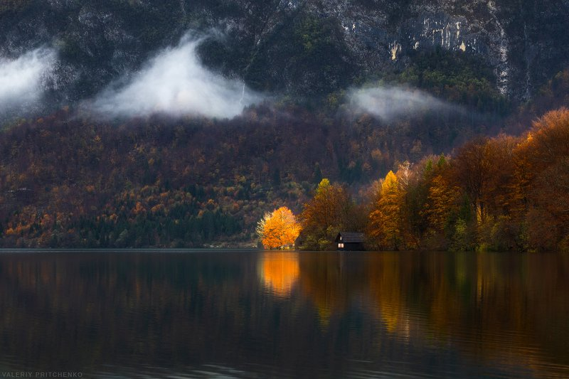 Slovenia, Bohinj, autumn, nature, landscape, Словения, Бохинь, осень, пейзаж Освещая осеньphoto preview