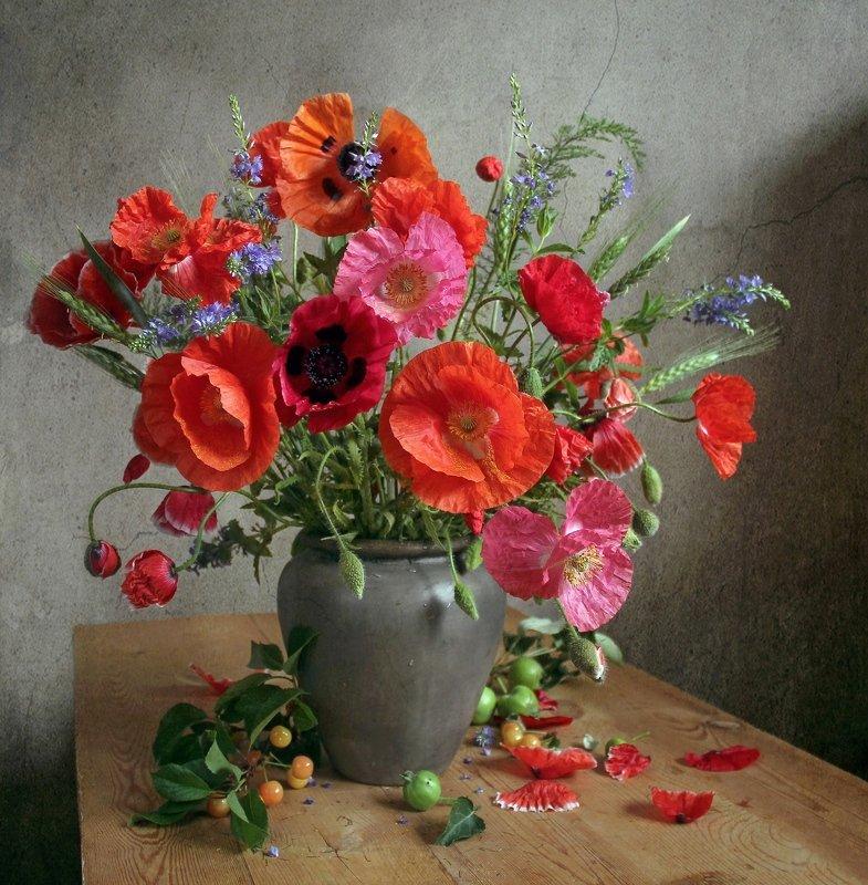 лето,  цветы,маки, натюрморт, марина филатова Макиphoto preview