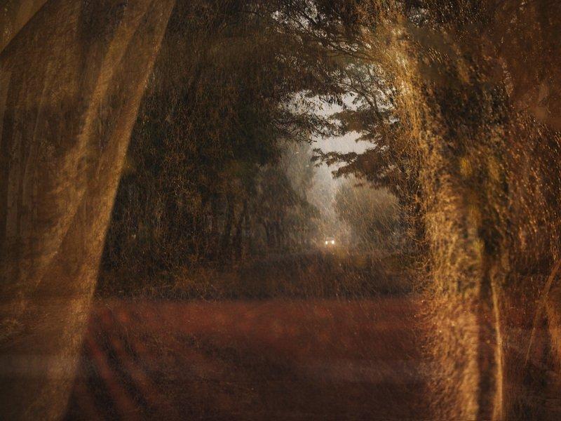 Оглянувшись назад, смотрим в жизненный путь Не уйти, не сбежать, никуда не свернуть  © Любовь Максимоваphoto preview