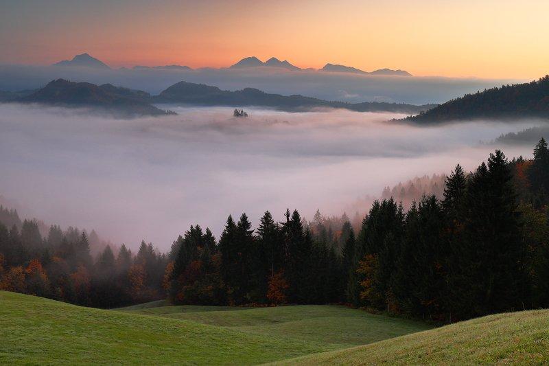 slovenia, morning, sunrise, autumn, church, earth, sky, mist, fog, tree, hill, forest Between earth and sky...photo preview